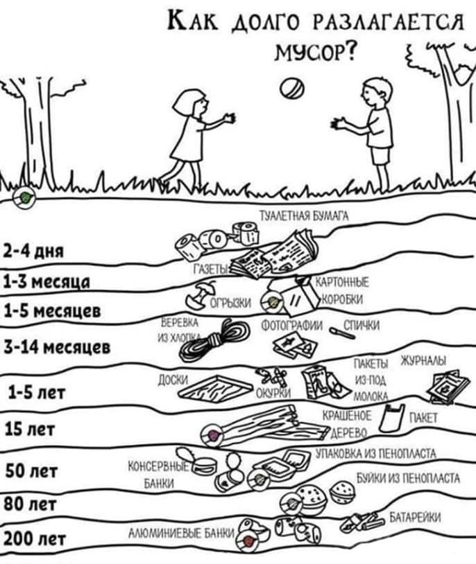 сколько разлагается мусор