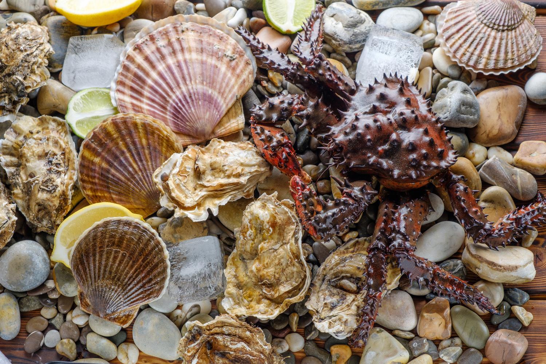 Живые морепродукты